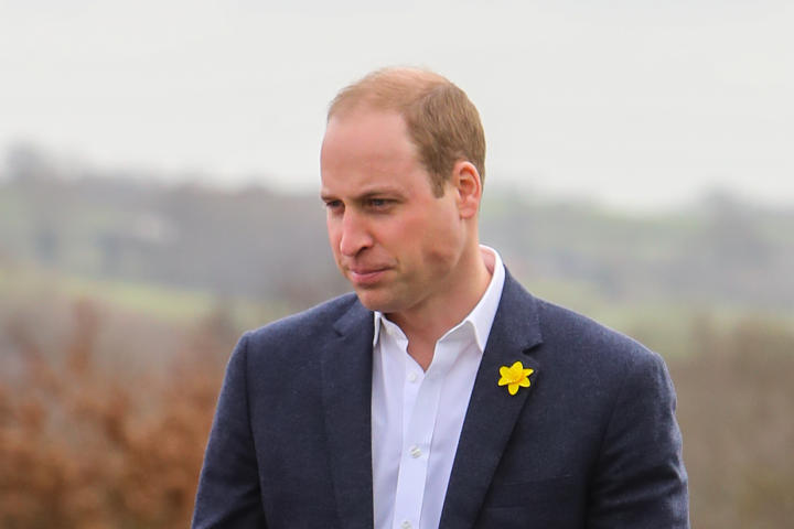 princewilliam-c436c0.png