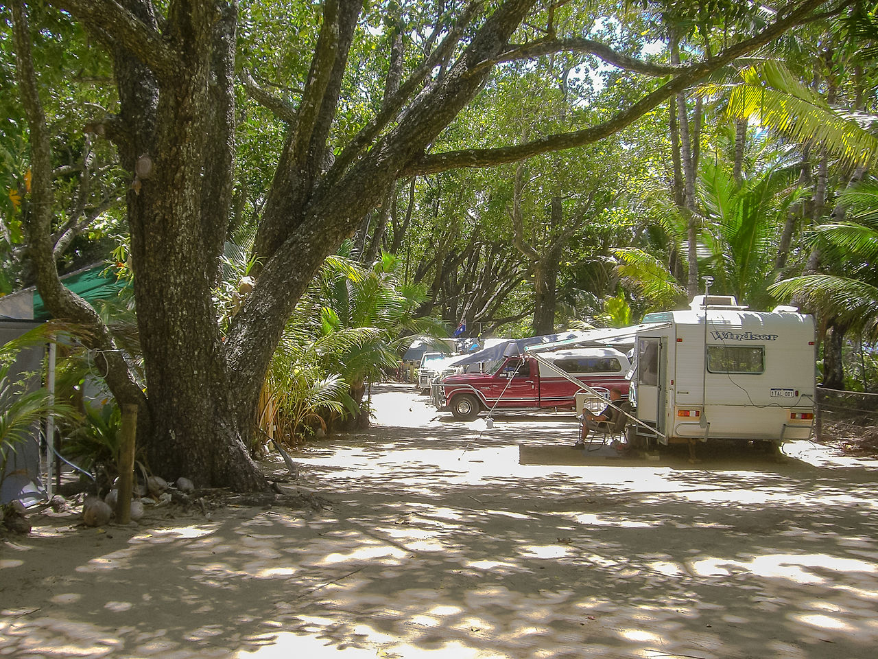 1280px-Camping_Daintree_National_Parc_Nationalpark_-22533827153-1ee7aa.jpg